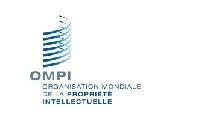 Dépôt de Copyright à l'OMPI (250 euros tout compris)